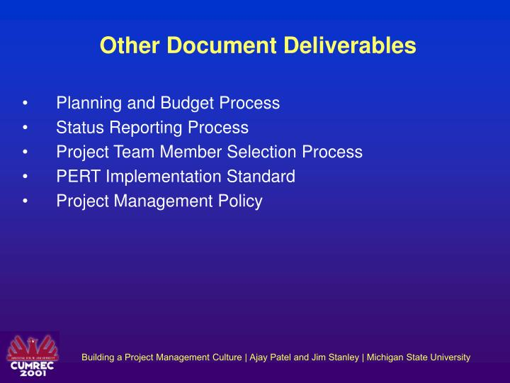 Other Document Deliverables