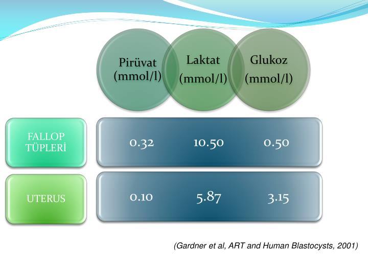 (Gardner et al, ART and Human Blastocysts, 2001)