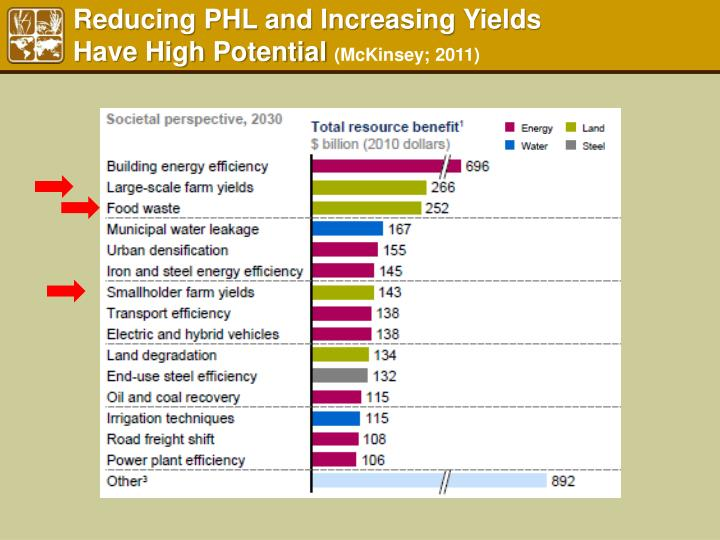 Reducing PHL and Increasing Yields