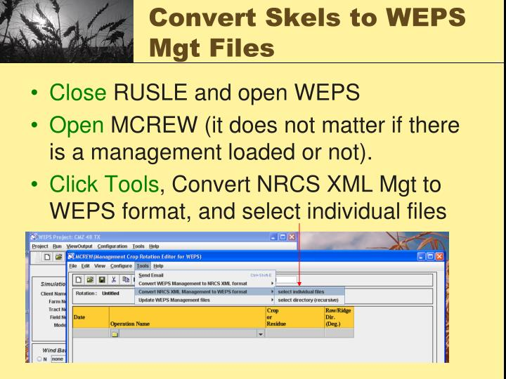 Convert Skels to WEPS Mgt Files
