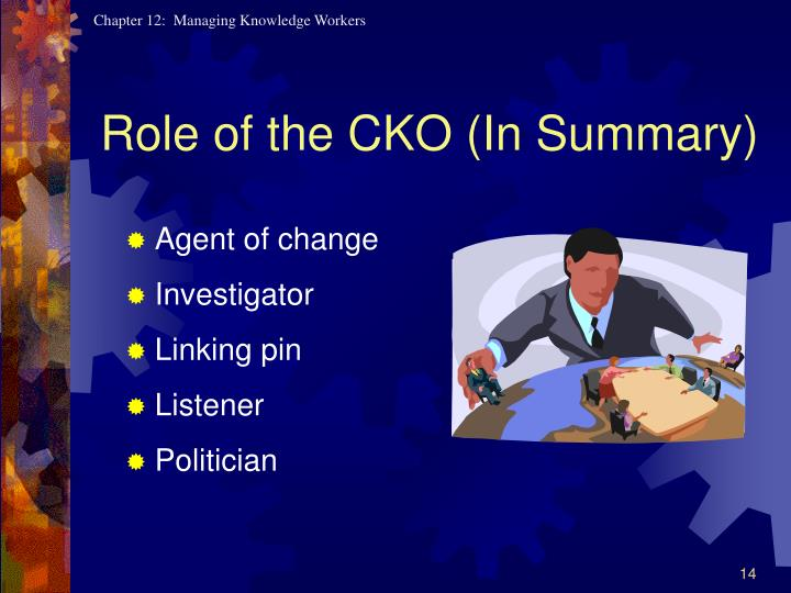 Role of the CKO (In Summary)
