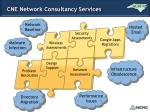 cne network consultancy services1