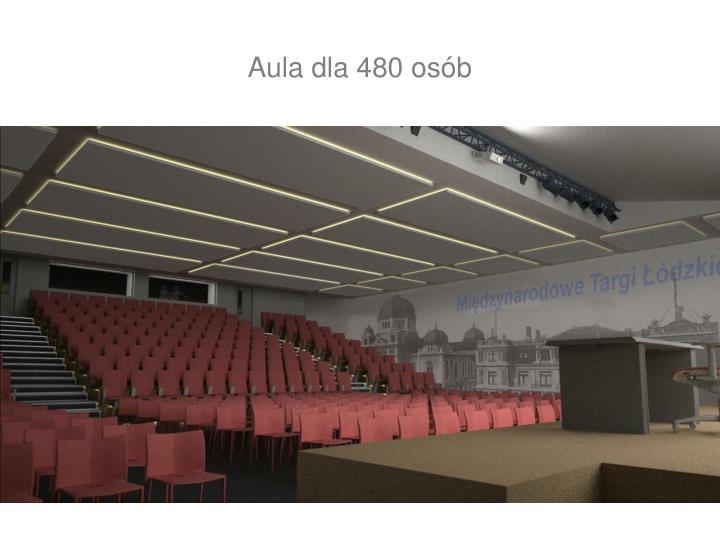Aula dla 480 osób
