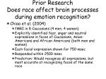 prior research does race affect brain processes during emotion recognition