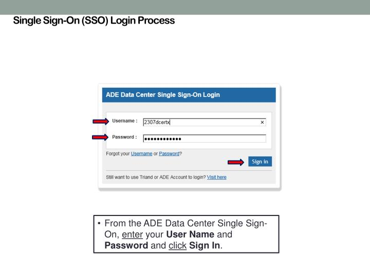 Single Sign-On (SSO) Login Process