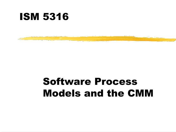 ISM 5316