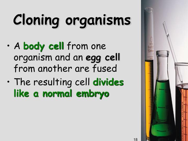 Cloning organisms