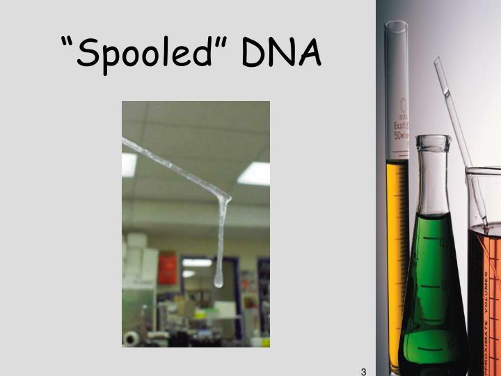 """Spooled"" DNA"
