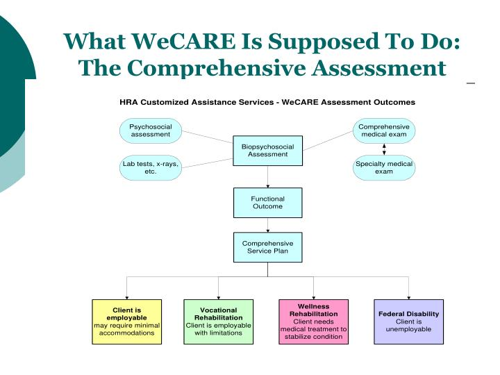 What WeCARE Is Supposed To Do: The Comprehensive Assessment