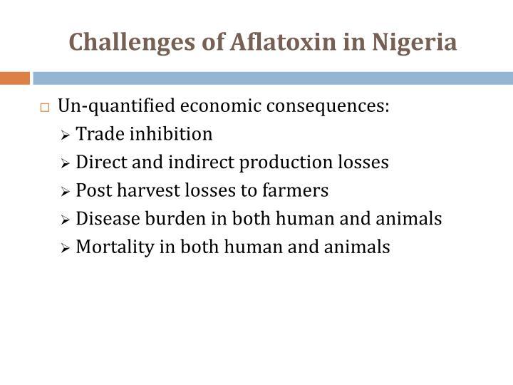 Challenges of Aflatoxin in Nigeria