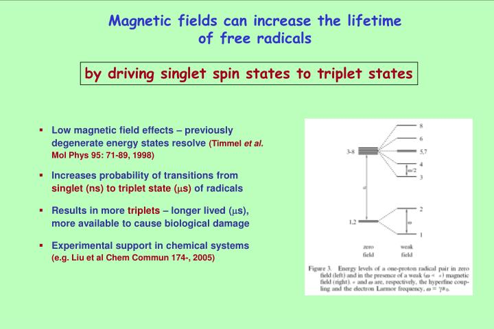Magnetic fields can increase the lifetime