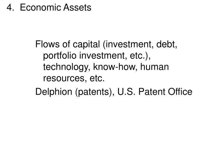4.  Economic Assets