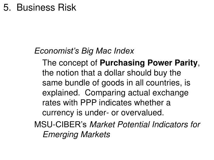 5.  Business Risk