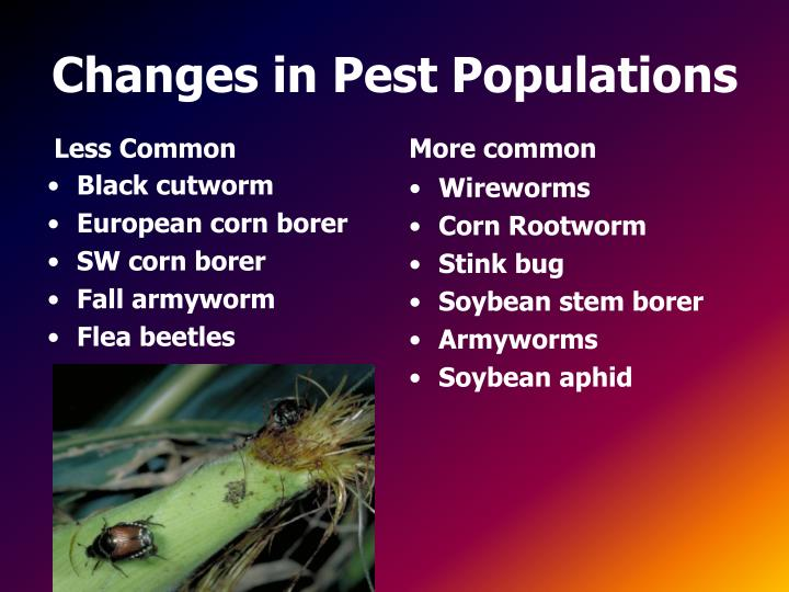 Changes in pest populations