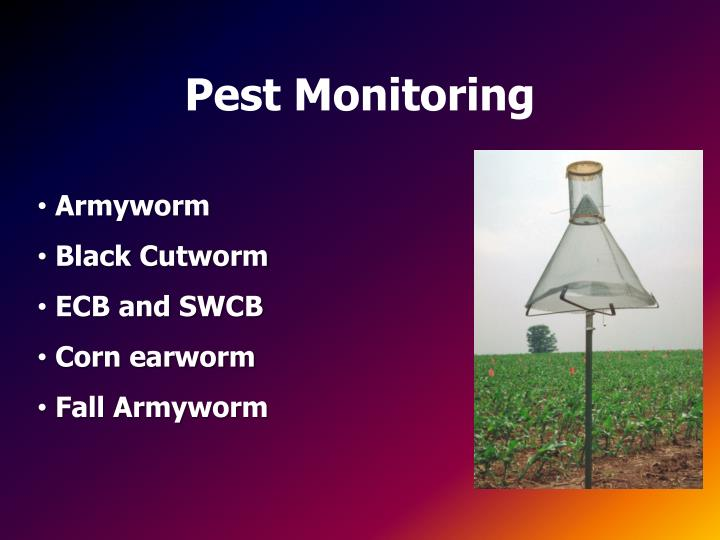 Pest Monitoring
