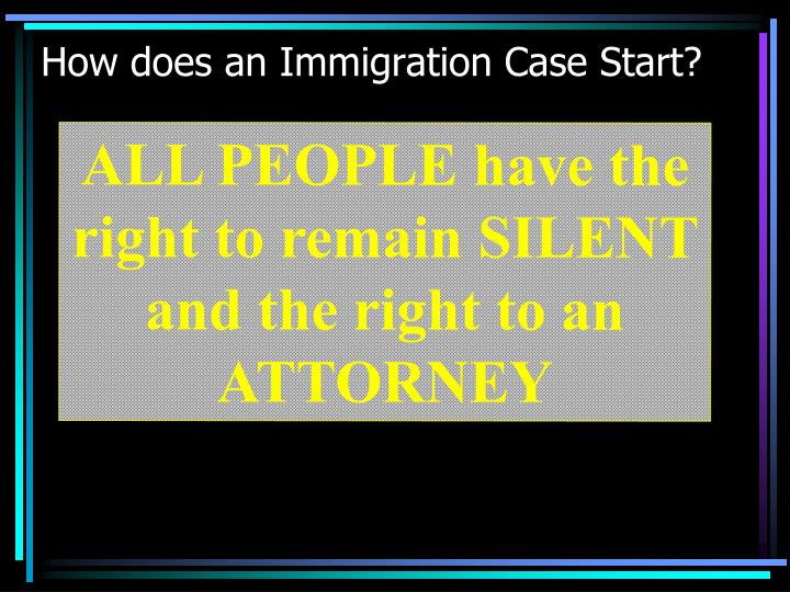 How does an Immigration Case Start?
