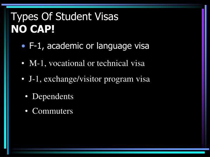 F-1, academic or language visa