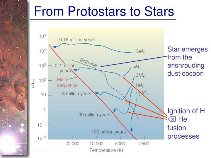 From Protostars to Stars