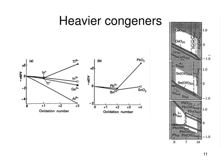 Heavier congeners