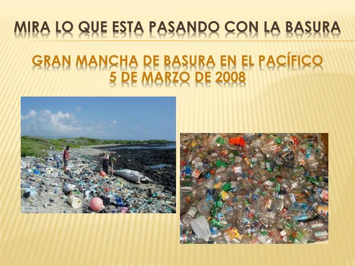 Mira lo que esta pasando con la basura