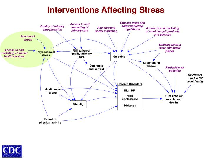 Interventions Affecting Stress