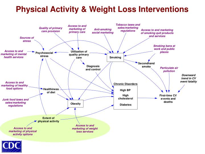 Physical Activity & Weight Loss Interventions