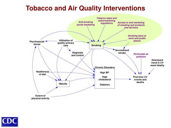Tobacco and Air Quality Interventions