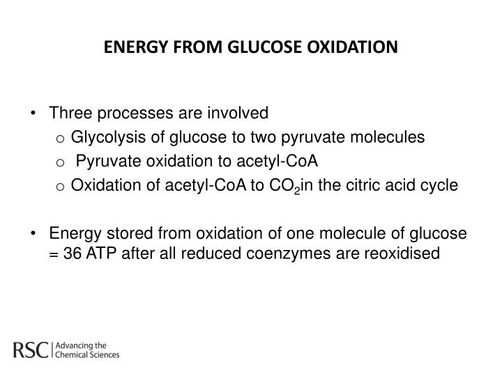 ENERGY FROM GLUCOSE OXIDATION