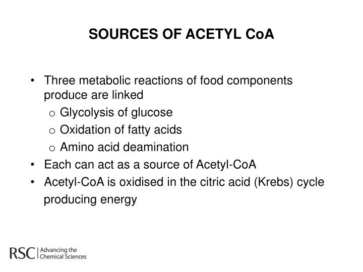 SOURCES OF ACETYL