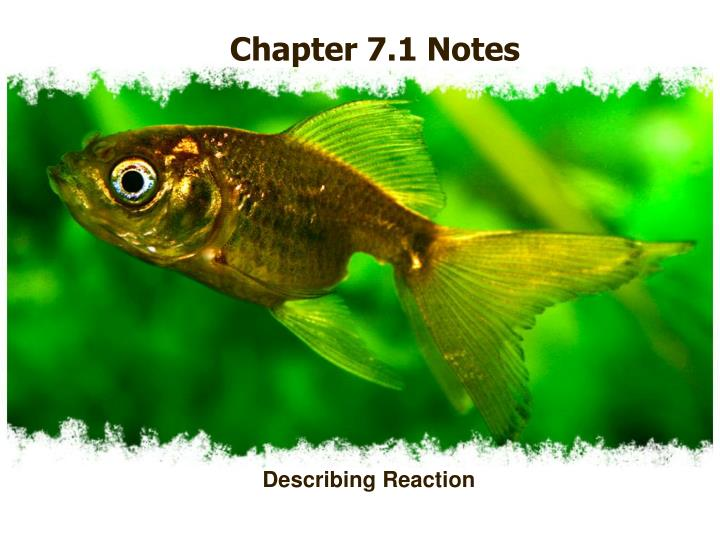Chapter 7.1 Notes