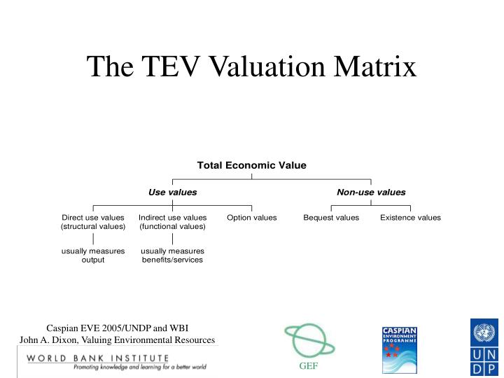 The TEV Valuation Matrix