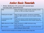 amber basic tutorials