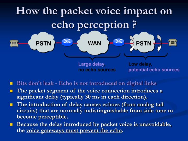 How the packet voice impact on echo perception ?