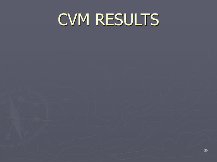 CVM RESULTS