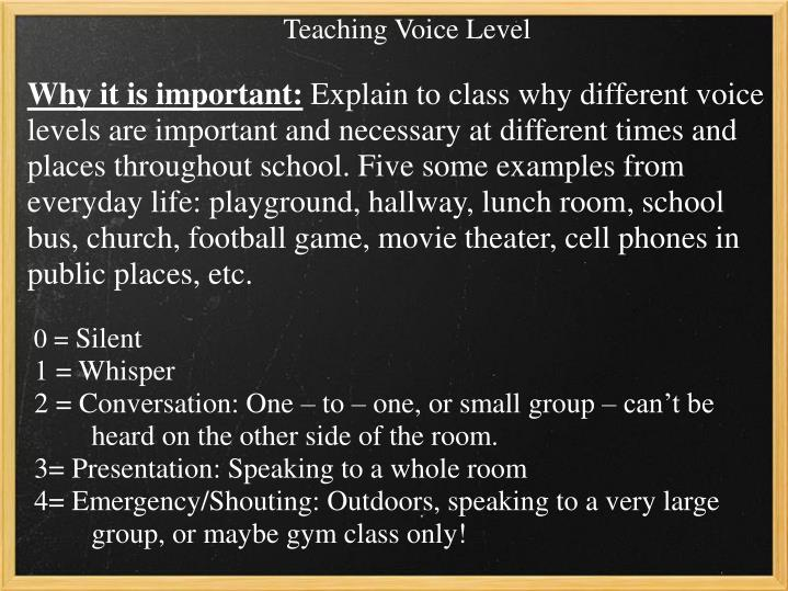 Teaching Voice Level