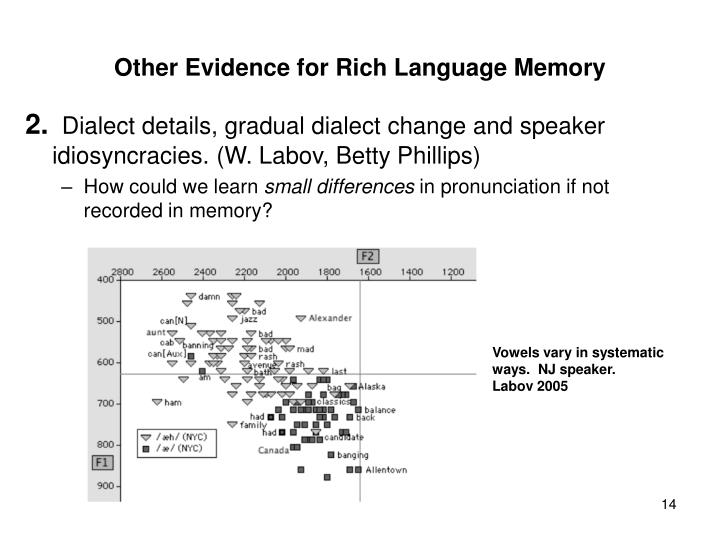 Other Evidence for Rich Language Memory