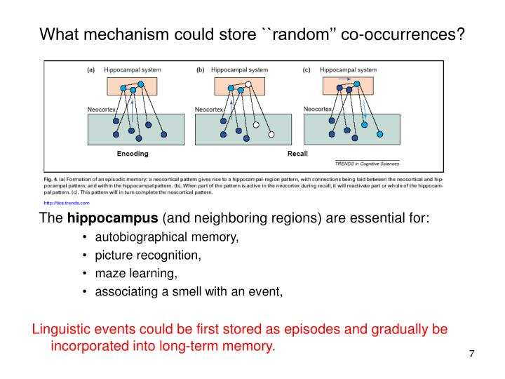 What mechanism could store ``random'' co-occurrences?