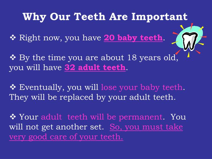 Why Our Teeth Are Important