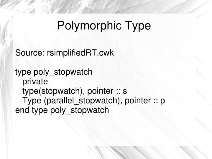 Polymorphic Type