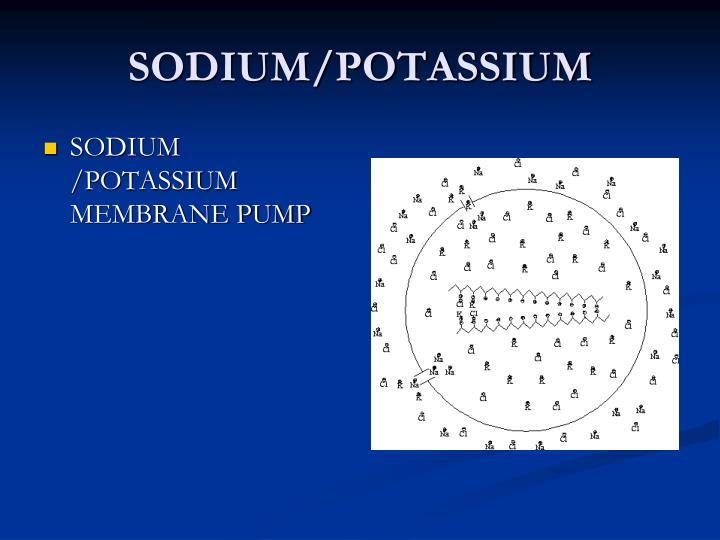 SODIUM/POTASSIUM