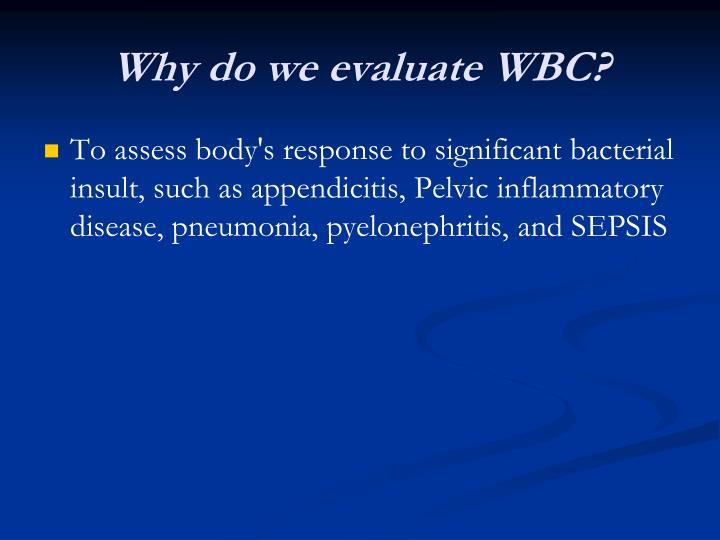 Why do we evaluate WBC?