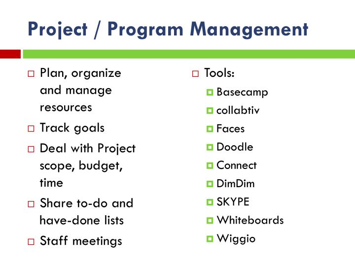 Project / Program Management