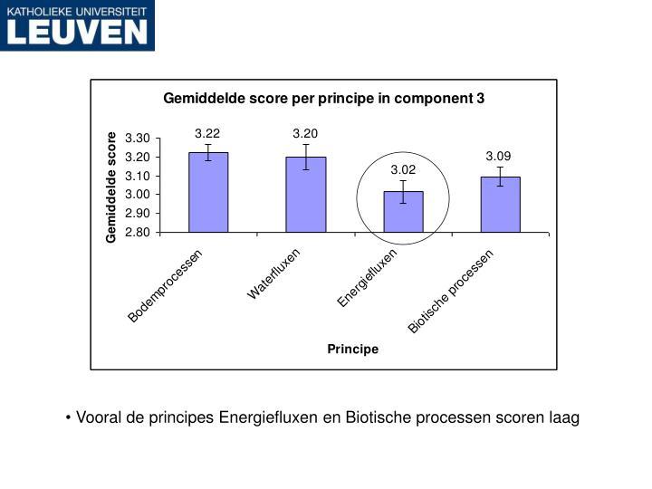 Vooral de principes Energiefluxen en Biotische processen scoren laag