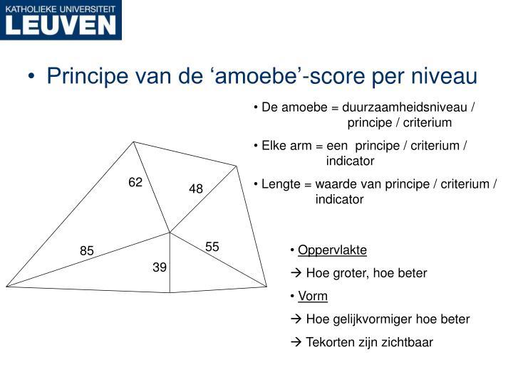 De amoebe = duurzaamheidsniveau /             principe / criterium