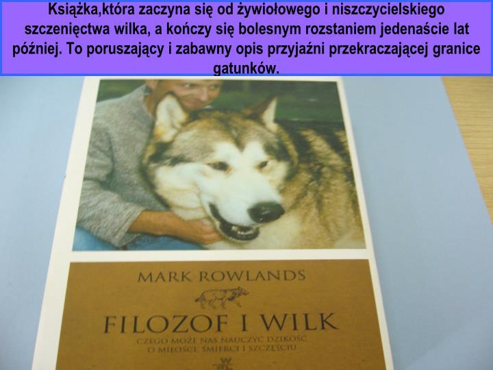 Książka,która zaczyna się od żywiołowego i niszczycielskiego szczenięctwa wilka, a kończy się bolesnym rozstaniem jedenaście lat później. To poruszający i zabawny opis przyjaźni przekraczającej granice gatunków.