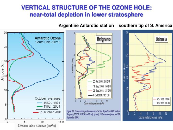 VERTICAL STRUCTURE OF THE OZONE HOLE: