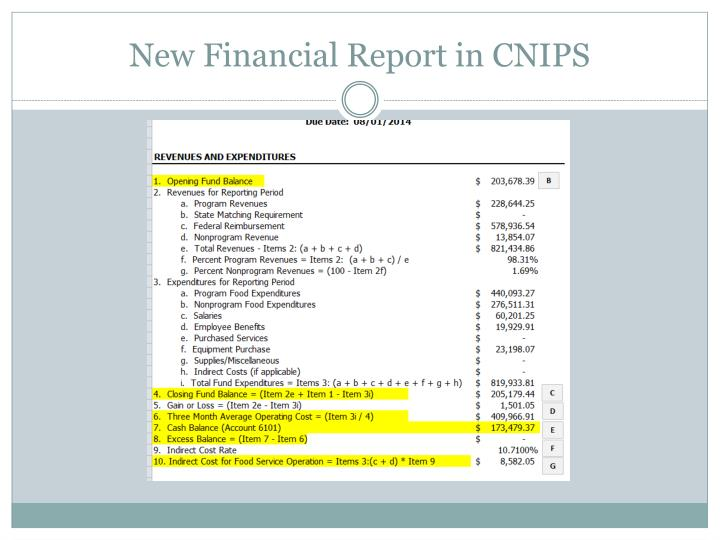 New Financial Report in CNIPS