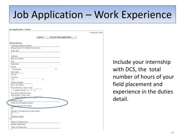 Job Application – Work Experience