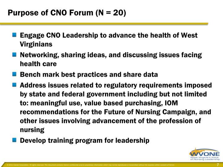 Purpose of CNO Forum (N = 20)
