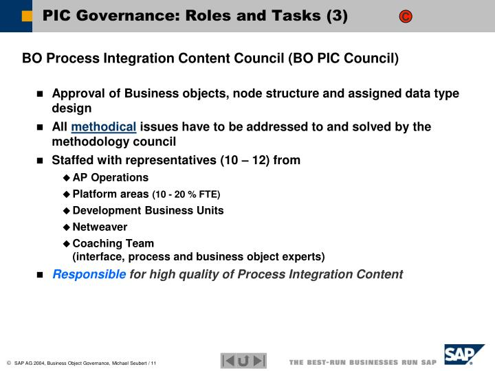 PIC Governance: Roles and Tasks (3)